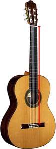Soprano Alto Requinto Bass and Contra Guitar